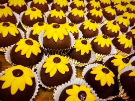 Sunflower Cake Balls